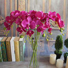Dark Purple Wedding Butterfly Orchid Phalaenopsis Flower Bouquet Table Decor
