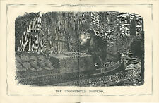 1874 Punch Cartoon Double-Page Unsuspected Torpedo Devil on Barge Smoking Pipe
