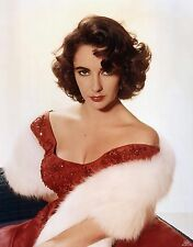ELIZABETH TAYLOR 8X10 GLOSSY PHOTO PICTURE IMAGE #3