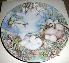 """7-3/4"""" Plate: The Ugly Duckling """"NOT LIKE THE OTHERS"""" by Karen Bornholt - 1985"""