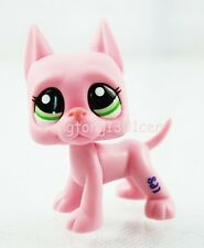 #2598 Rare Pink Great Dane Dog With Green eyes Hasbro Littlest Pet Shop LPS Toys