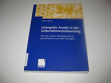 Intagible Assets in der Unternehmenssteuerung von Dieter Becker