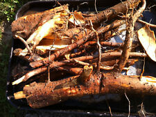 8 ounces of fresh organically grow  sassafras root. Used to make wonderful tea