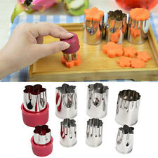 10 Pcs Stainless Steel Flower Shape Cake Cookies Vegetable Fruit Cutter Mold Set