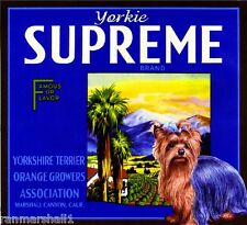 Marshall Canyon Yorkshire Terrier Dog Yorkie Orange Fruit Crate Label Art Print