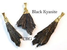 Gold Plated Black Kyanite Crystal Fan Pendant (FN10BT)