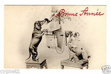 POSTCARD DOGS DACHSHUND & JACK RUSSELL ON TELEPHONE NEW YEAR BONNE ANNEE