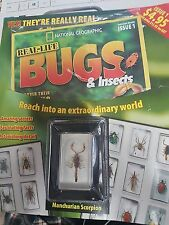 National Geographic Real-Life Bugs & Insects Magazine Issue 1 HARD TO FIND