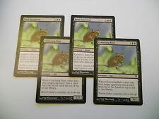 4x MTG Ratti Squittenti-Chittering Rats Magic EDH DKS Darksteel ITA-ING Modern