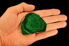 Polished Birds Eye Malachite Slice Natural Mineral Rock Display Specimen Stone