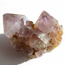 SPIRIT QUARTZ Cactus Crystal Point Cluster CC700 Ametrine/Amethyst with Phantoms