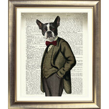 Art print on ORIGINALE ANTICO LIBRO pagina DOG BOSTON TERRIER immagine dizionario