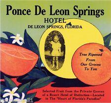 De Leon Springs Florida Ponce De Leon Orange Citrus Fruit Crate Label Art Print