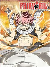 FAIRY TAIL - LIGHTNING FIRE POSTER 24x36 - MANGA ANIME 51903