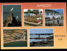 AMBON (56) Commerce ALIMENTATION, JEU de PETANQUE au CAMPING de CROMENAC'H animé