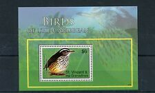 St Vincent & The Grenadines 2007 MNH Birds of Caribbean 1v S/S Water Thrush