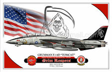"F-14D ""TOMCAT"" VF-101 - Grim Reapers -  Airplane Profile Poster"