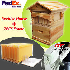 7Pcs Updated Auto Flow Honey Bee Hive Frames + Beehive Wooden House Beekeeping