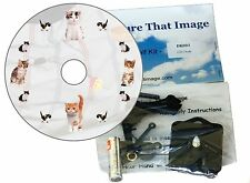 New CD Clock Kit , Kitten Cats with a Kitten Dial - for all Cat Lovers