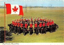 BG13798 royal canadian  mounted police horse military militaria canada