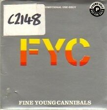 (CP552) Fine Young Cannibals, Flame - 1996 DJ CD