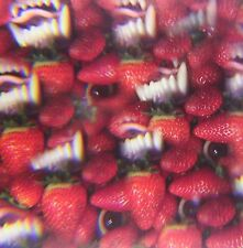Thee Oh Sees - Floating Coffin Sealed LP with Download Code