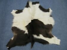 Horse Hide Icelandic Long Hair