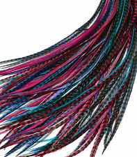 "Real Feather Hair Extensions 25 XXL 9-14"" - Berry Mix Pink blue purple"