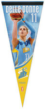 Rare ELENA DELLE DONNE Chicago Sky WNBA Premium Collectible Felt Pennant