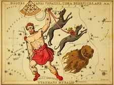 PAINTINGS DRAWING STAR MAP BOOTES DOG HAIR CONSTELLATION LV3127