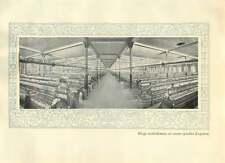1920 Italy Legnano Huge Establishment Of Cotton Spindles