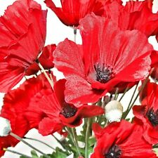 50 Artificial 62cm Flame Red Poppy Flower Stems