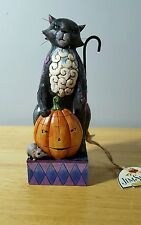 "Jim Shore Heartwood creek "" Scaredy Cat"" Halloween cat 4015694"