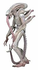 "NECA Aliens 7"" Scale Series 9 Xenomorph ALBINO Drone Action Figure"
