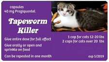 Tapeworm Medicine~~ 4 capsules Prazyquantel Purple 40 mg Can treat 2-4 Big Cats
