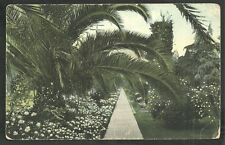 1906 On the Road of a Thousand Wonders Garden Flower Beds Palm Trees Walkway