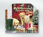 ADVENT CALENDAR FOR YOU DOG - TREAT BEHIND EVERY DOOR - K1043 - CUTE PUPPIES