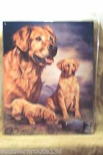 Tin Metal Sign Golden Retriever Duck Hunting Hunting Dog Man Cave Den Gift 911