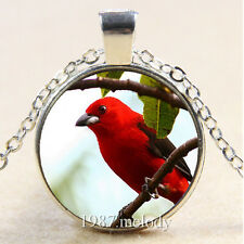 Photo Cabochon Glass Silver Chain Pendant Necklace (Red bird)