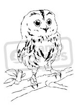 A7 'Owl On A Tree Branch' Unmounted Rubber Stamp (SP000376)