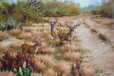 THREE AMIGOS Deer Giclee Canvas  David Drinkard ON SALE ONLY ONE AT THIS PRICE