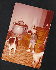 Vintage Photograph Little Boy & Two Puppy Dogs Standing By Retro Television Set