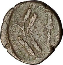 ELAIA in AEOLIS 2-1CenBC Demeter Torch Authentic Ancient Greek Coin i51994