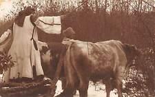 B71912 Port popular Femeie Cu vacile la pascut  types folklore costumes  romania
