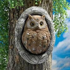Wizard Mail Carrier Owl Post Mystical Magical Brown Owl Knot Hole Tree Sculpture
