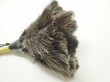 """Christmas gift Desk Ostrich feather duster with wooden handle small 11"""" 28cm"""