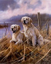"GOLDEN RETRIEVER DOG FINE ART LIMITED EDITION PRINT - ""Golden Moments"""