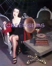 Vampira STUNNING 16x20 rare archival photo Large! TV Maila Nurmi mint Ed Wood
