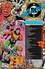 WHO'S WHO: THE DEFINITIVE DIRECTORY OF THE DC UNIVERSE VOL XXIV FEB 87 NM COND