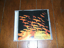 David DeWolf - Consumed By Fire 1998 CD Lord I Lift Your Name On High Hosanna